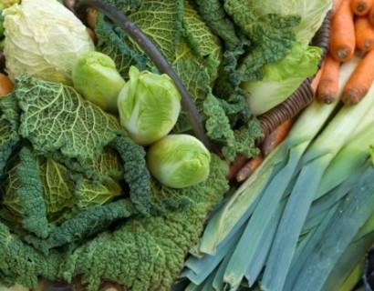 Groenten (momenteel géén aanbod)
