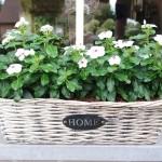 Hoe vul ik mijn bloembakken op de juiste manier?