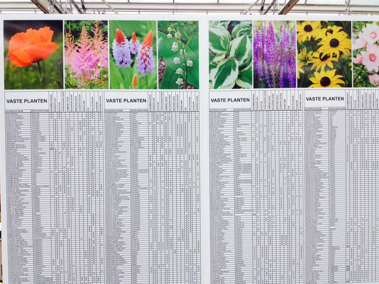 eigenschappen vaste planten