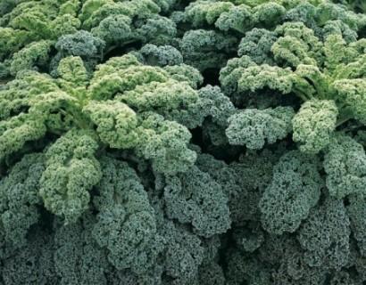 Boerenkool - groene asperge