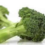 Broccoli, koolrabi, rode kool, boerenkool, sla, knolselder, witte kool en nog zoveel meer…..om zelf groenten te kweken.