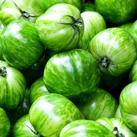 Green zebra tomaat -