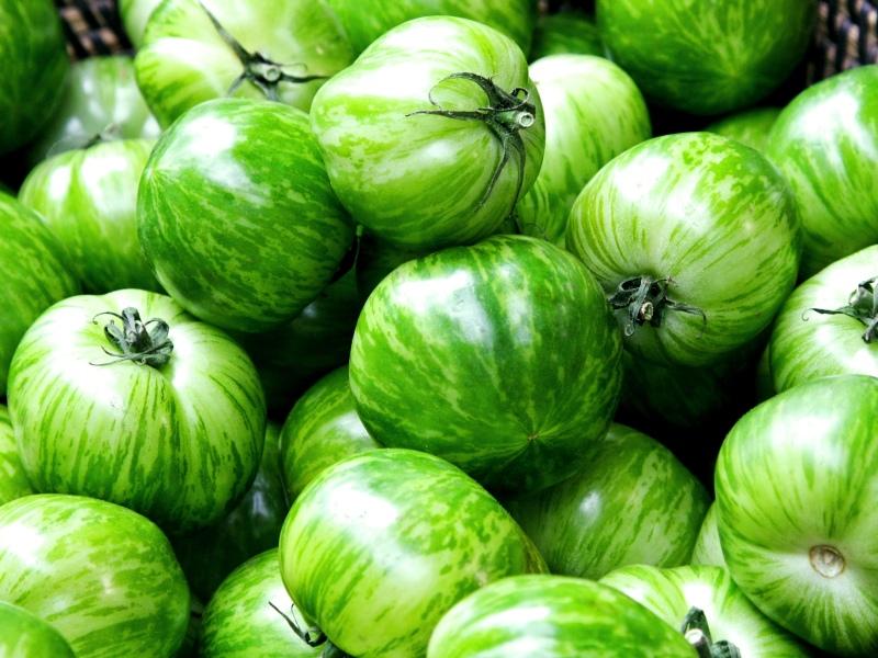 tomaat green zebra