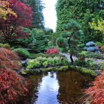 Hoe leg ik een Japanse tuin aan?