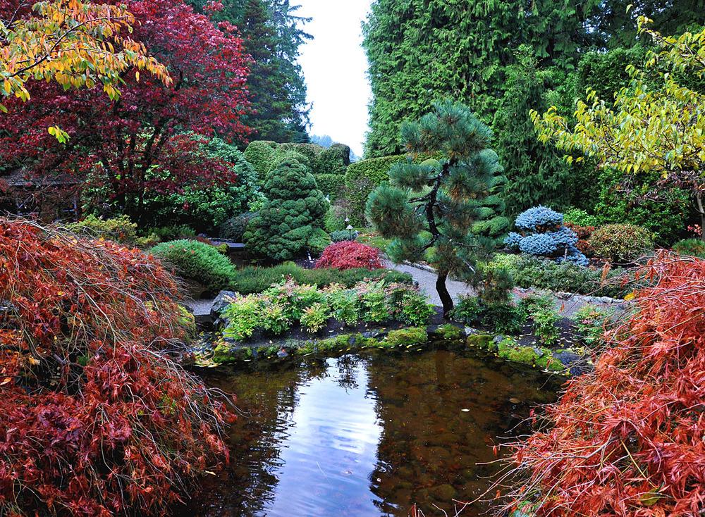 Hoe leg ik een japanse tuin aan mar chal for Tuinen aanleggen foto s