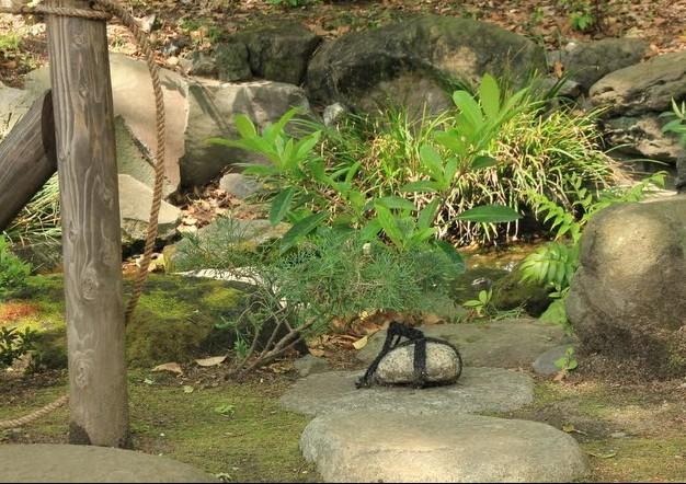 tome ishi japanse tuin
