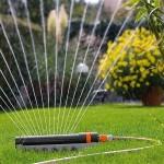 Hoe moet ik mijn planten water geven?