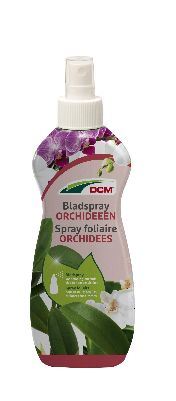 Dcm bladspray orchideeën.
