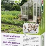 Hoe kan ik mijn planten milieuvriendelijk tegen luis beschermen?