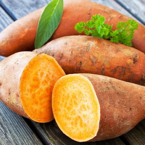 Ipomoea batatas - Zoete aardappel of bataat